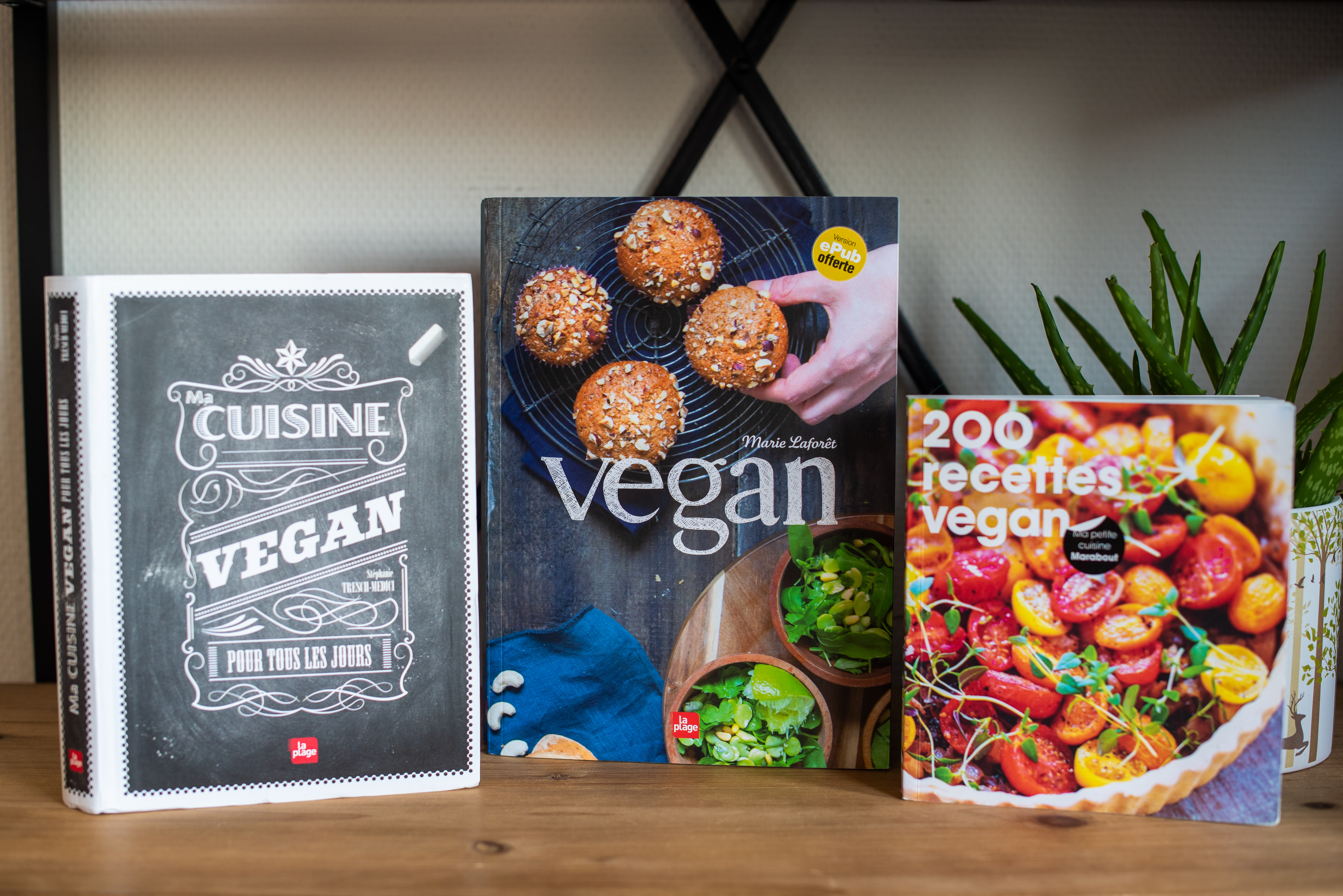 Vegan 3 Livres De Recettes Pour Demarrer Carnets Vegan