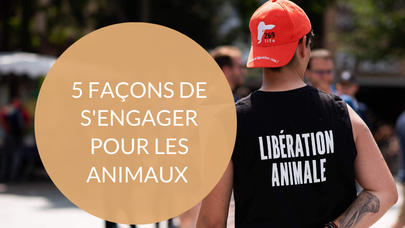s'engager pour la cause animale